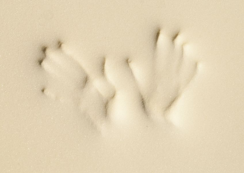 Материал, запоминающий форму прикосновения